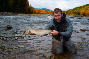 Bull trout in a beautiful place