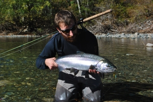 An average sized coho for this system - again on the spoon