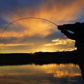 An awesome sunset, hooked up on a good fish!
