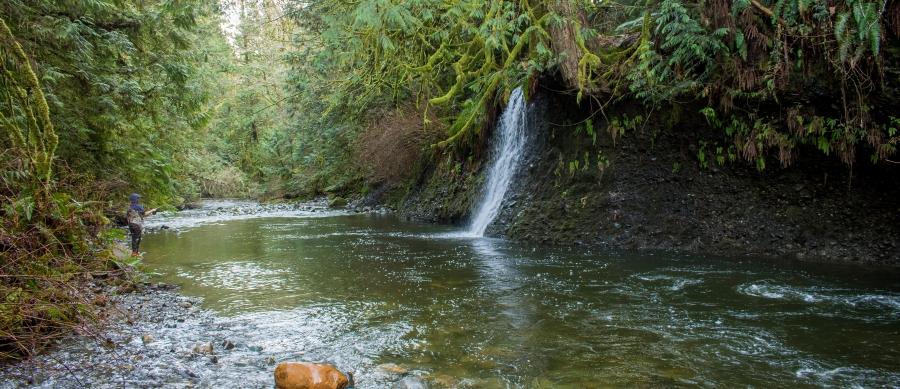creek spot
